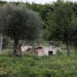 Earthquake damaged house, Valva, Italy